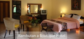 Rambutan Suite