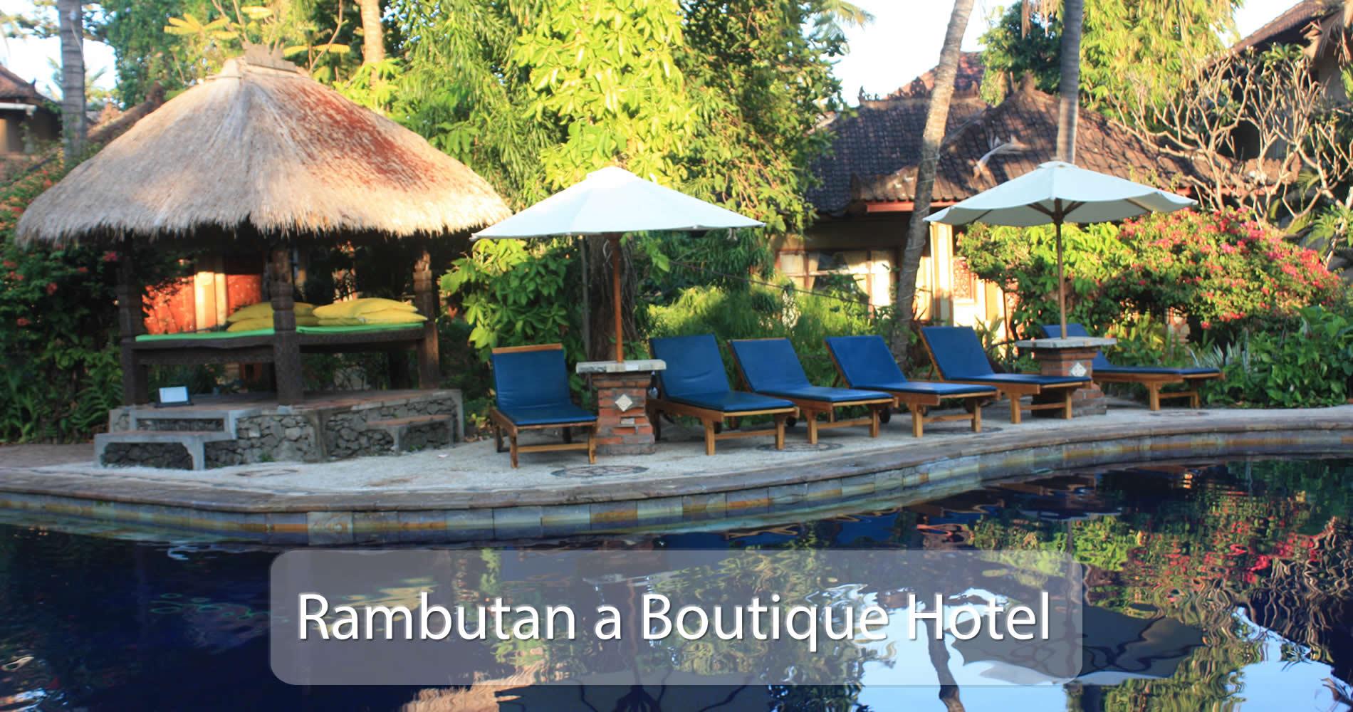 Rambutan Pool