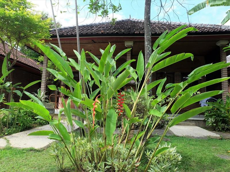 veranda standard 2